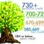 Как построить кредитную историю. Итоги