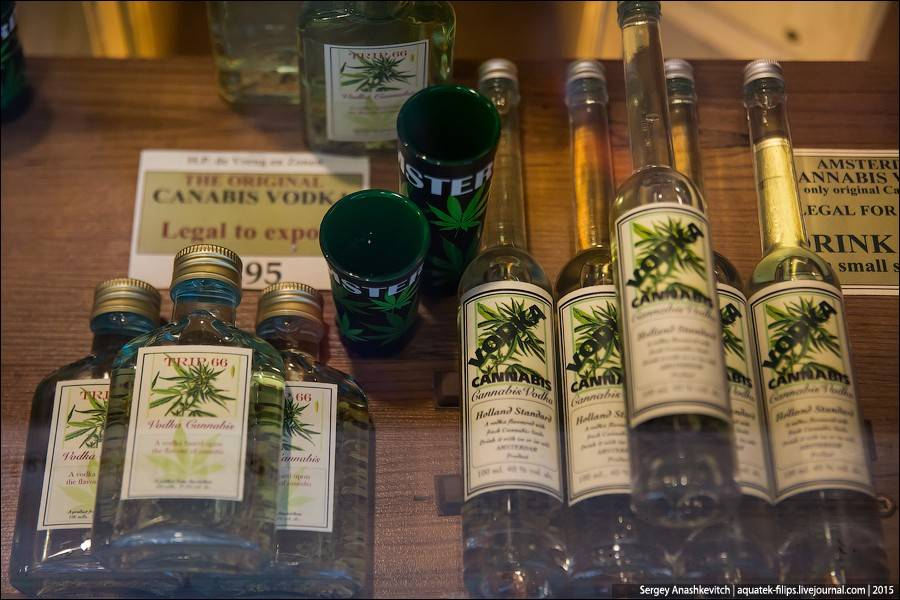 Как вывезти марихуану из амстердама сушенная конопля фото